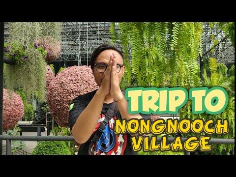 trip-to-nongnooch-village-pattaya