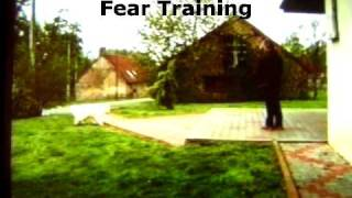 Dogs Trust Approved Spray Collar Fear Training.