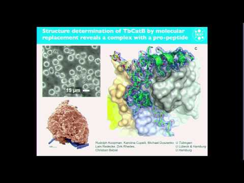 """Single-Molecule Imaging""  by Henry Chapman (DESY/University of Hamburg, Germany)"