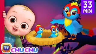 Download Video Animal Homes Song + More Nursery Rhymes & Kids Songs - ChuChu TV MP3 3GP MP4