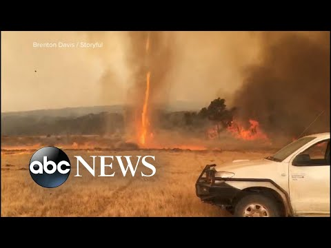 Massive evacuation underway due to fires in Australia l ABC News