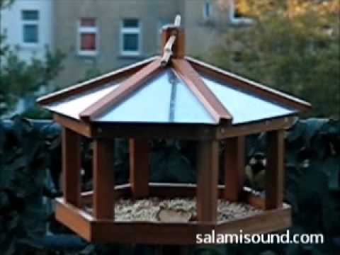 salamisound video mp3 sounds in the video stream