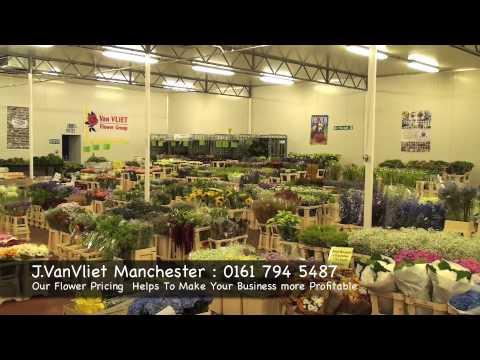 J Vanvliet Manchester Wholesale Flowers