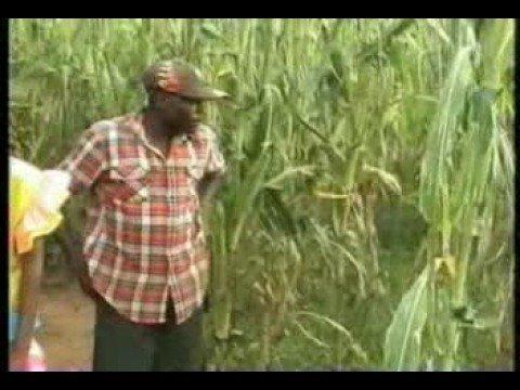 Download Kenneth Khaemba : Amatumwa