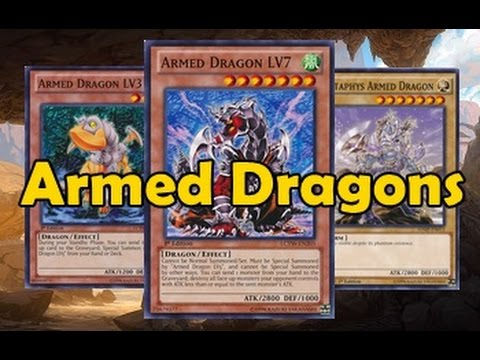 Armed Dragon Style