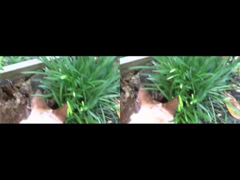 3D Test Video_Movavi Video Converter 3D.mp4