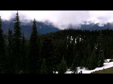 Vic´s The city and the wilderness-Day 5 Olympic National Park