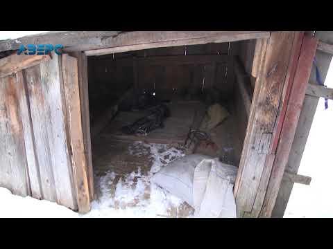 ТРК Аверс: У Луцькому дворі знайшли неповнолітню без одягу