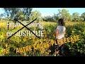 Les ALTERNATIVES au FRUIT PICKING et aux fermes   Pour une 2ème Année en WHV en AUSTRALIE
