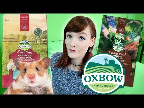 Munchie Talk | Why I Don't Recommend Oxbow Hamster And Gerbil Food
