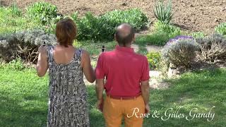 Tracé jardin 2018 - Médecine Symbolique