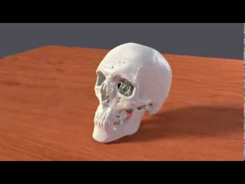 3D printable human skull created from CT scan, free file download