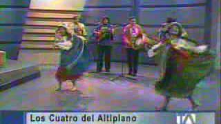 Sanjuanitos- Rosalia -Tostadito
