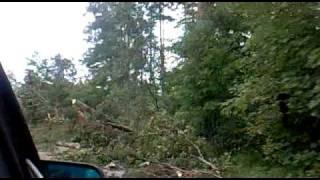 Сосново Последствия катастрофы5(, 2010-08-02T20:29:58.000Z)