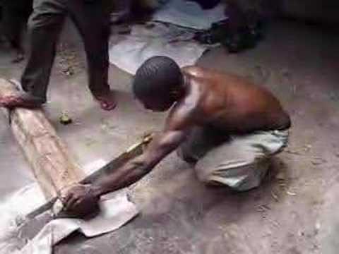 Sawing ebony wood