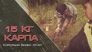 Ловля карпа в Смоленске, Рыбалка в Смоленске на платнике.(, 2015-07-30T22:19:10.000Z)