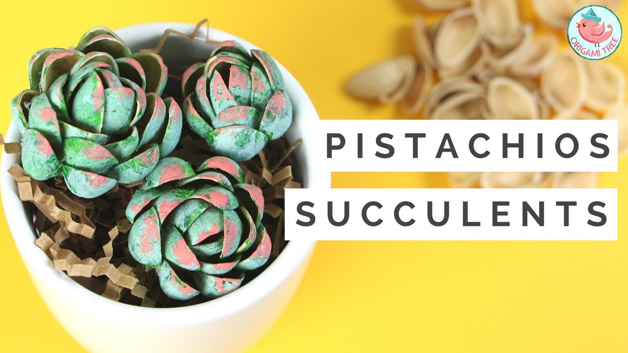 How To Make Succulents Flowers From Pistachio Shells Recycled Upcycled Shell Crafts
