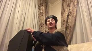 Владимир Колесниченко. Особенности аккордеона. Урок 1.
