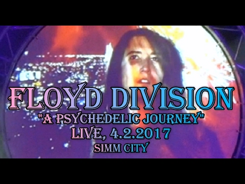 Floyd Division / In the Flesh / Learning to Fly / Shine on
