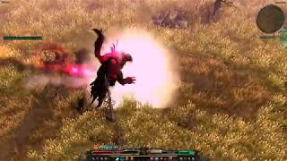 Download Grim Dawn Witchblade 2h Ranged Videos - Dcyoutube