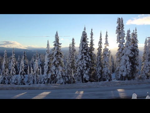 BRITISH COLUMBIA | a five month exchange in Canada