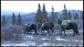 Yukon, polowanie na łosia - Poznaj Kanade