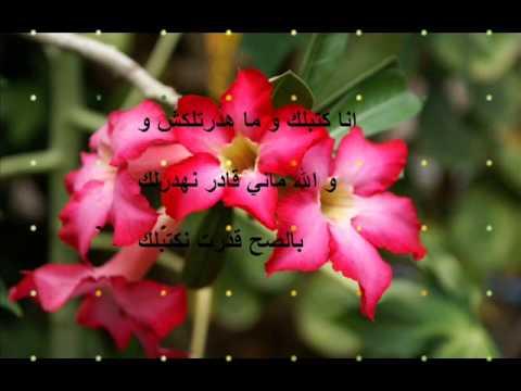اجمل رسائل حب للحبيب باللهجة الجزائرية Risala Blog