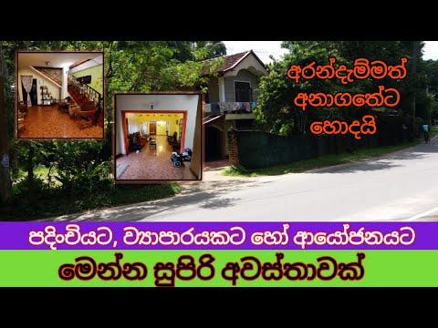 Niwasa Samaga Idama   Commercial Property   Gedara   Agricultural Land   Land Sale   Kandy Property