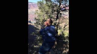 Grand Canyon #4 Yodel