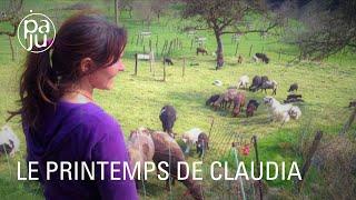Download lagu Portrait d'une éleveuse de moutons dans le Jura