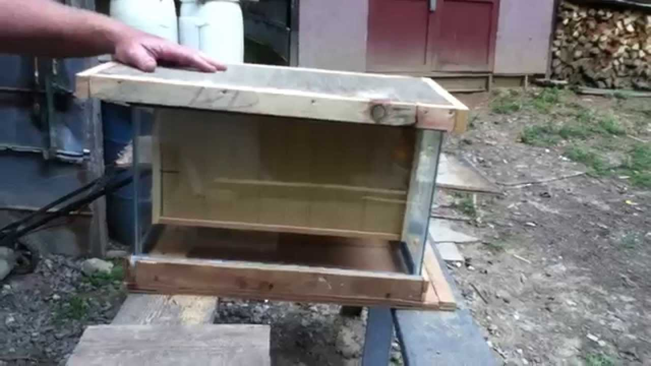 DIY Aquarium Bee Hive Cheap And Easy
