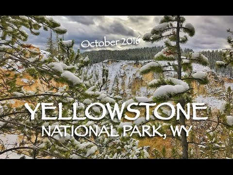 Winter in Yellowstone National Park [HD]