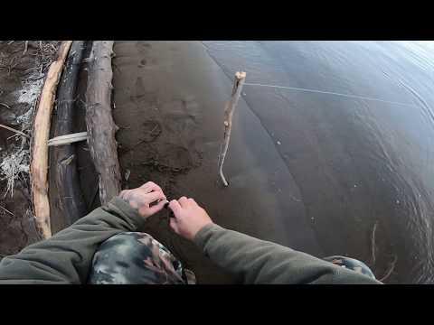 видео: Рыбалка удалась..