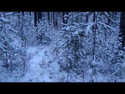 Снег и камни , Зима в Озёрске , озеро Акакуль