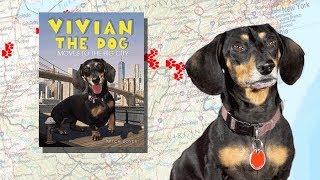 VIVIAN THE DOG: Moves to the Big City 🐾  | Picture Book Trailer