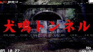 Download lagu 日本にある最恐の心霊スポットへ行けるホラーゲームが面白い【犬鳴トンネル】