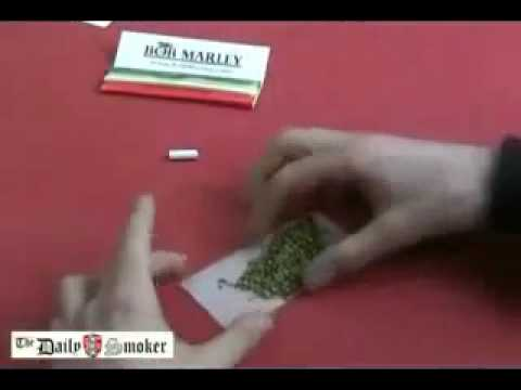 Daily Smoker - How to Roll a Joint