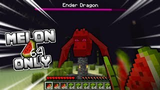 Beating the Ender Dragon with ONLY MELONS!! (Minecraft Let's Play #12)