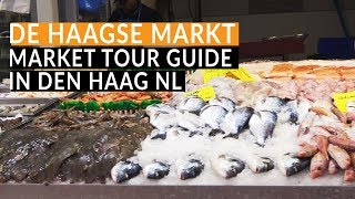the hague travel guide