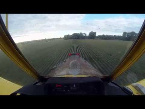 Crop Dusting - AT402 - Small Field, Big trees - Platteville, CO