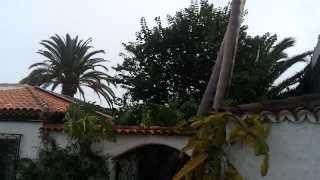 Пальмы, дома и кактусы(, 2013-10-20T08:50:19.000Z)
