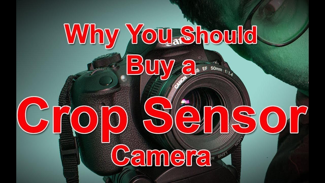 Why You Should Buy a Crop Sensor Camera || Ameleen Bux ...