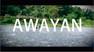 Kalimantan selatan awayan