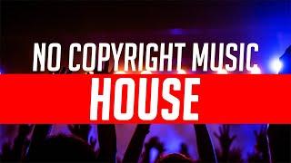 HOUSE 3 NO COPYRIGHT MUSIC