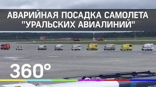 Аварийная посадка самолета Уральских авиалиний