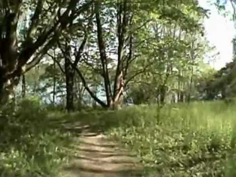 Wildwood Lake Trail Update May 2012