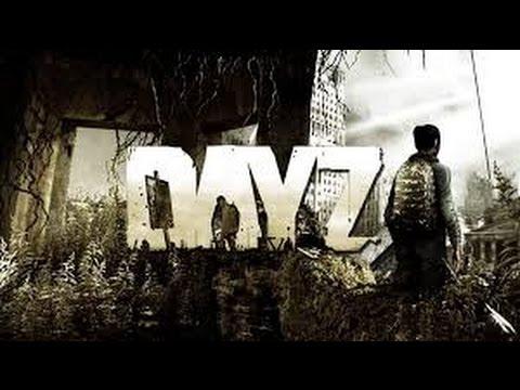 Как играть в Arma2:Dayz через Steam