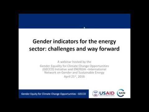 Gender indicators for the energy sector: Challenges and ways forward