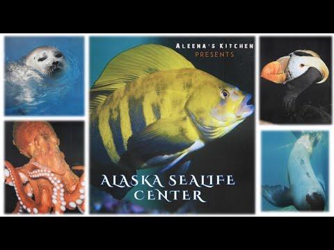 ALASKA SEALIFE CENTER | ALASKA