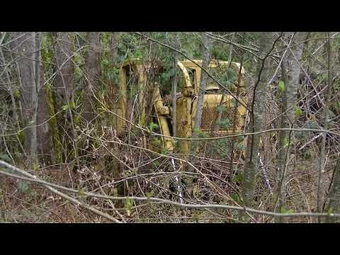 Forgotten Logging Equipment